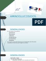 Aminoglucosidos Farma Cap 54