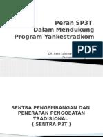 Peran SP3T-29-30 April 2013--Dr. Asep Sukohar, Dr.,M.kes