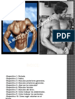 lamusculaturacorporal-110530064307-phpapp01.pptx