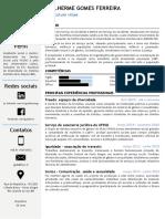 CV - Infográfico, Guilherme
