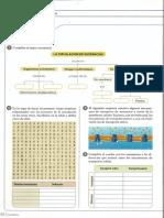 taller-circulacion-celu-hongos-y-plantas.pdf