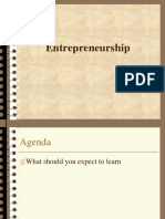 Introduction to Entreprenurship