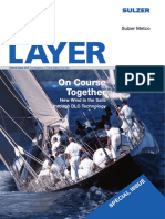 Layer Special Issue 2010