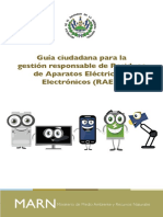 GuiaRAEE cs6