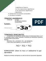 Algebra Terminos Semejantes