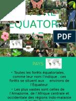 La Forêt Équatoriale