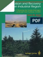 John M. Gunn - Restoration and Recovery of an Industrial Region.pdf