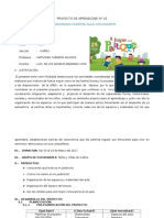 PROYECTO DE APRENDIZAJE N°01-2017
