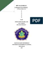 RPL klasikal gaya belajar.doc