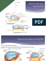 2. DTN y Anemia Ferropenica
