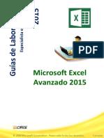 Guía de Excel AVANZADO 2015.pdf