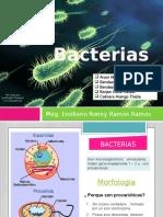Bacterias Morfología Pared