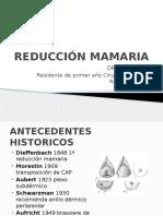 Reducción Mamaria y Mastopexia