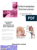 T4_Enfermedades-glomerulares