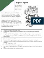 Magnets (Pigeons Compasses) Worksheet