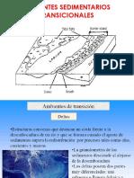 ambientes sedimentarios transicionales.pdf