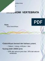 4-2-osteichthyes.pdf