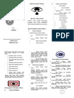 Brochure Cidera Mata.doc