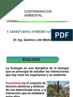 Ecología y Ciclos