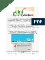 BEINI.docx
