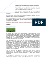 Agricultura en El Paraguay