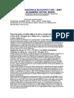 Secakdemica.blogspot.com - Proliferacion de Adipocitos