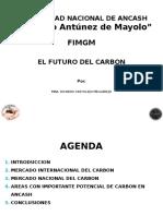 PRESENTACION UNASAM carbon.pptx