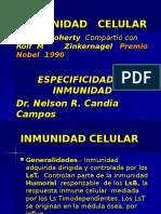 Celusar 5.ppt