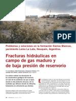 Fracturas Loma La Lata- Sierra Blancas.pdf