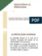 Introduccion a La Psicopatología