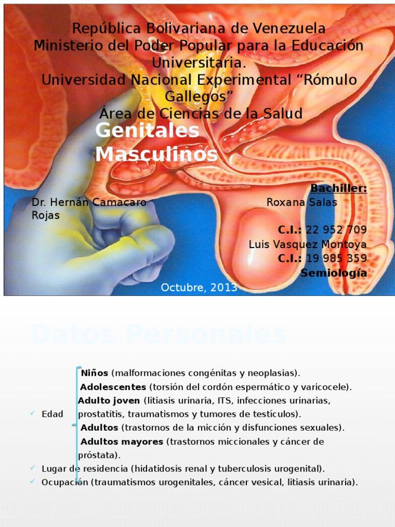 Prostatitis ESRV 01)
