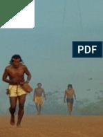 O BRASIL DOS ÍNDIOS UM ARQUIVO ABERTO.pdf