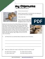 3rd-chipmunks_WBDDF.pdf