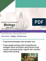 Ppt Bio Mol Kelas a Kelompok Fungi - Chapter 31 Fungi Ok