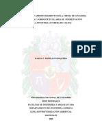 USO DE LEVADURA TESIS.pdf