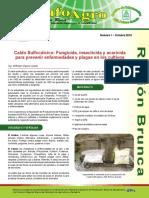 Mezcla sulfocalcica