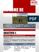 2 Do Informe de Avance