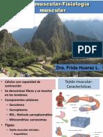 Fisiologia muscular.pdf