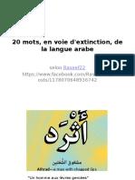 Les 20 Mots De La Langue Arabe En Voie d'Extinction