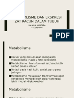 Metabolisme Dan Ekskresi Zat Racun Dalam Tubuh