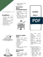 23757643-DIARE-Leaflet.doc