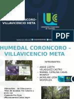 HUMEDAL CORONCORO