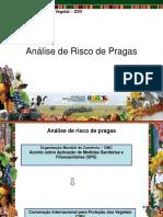 06- Análise de riscos de pragas (1).pdf