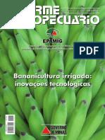 banana irrigada.pdf