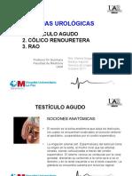 Tema-18_Retencion-urinaria_colico-nefritico-y-testiculo-agudo.pdf