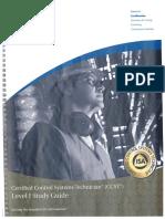 CCST Level 1.pdf