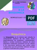 Introduccion a la bioquimica y compocision del cuerpo humano :)