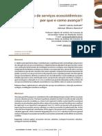 Valoração de serviços ecossistêmicos porque e como avançar.pdf