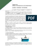 PRODUCCIÓN SECUNDARIA Y TROFISMO