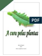 Livro a Cura Pelas Plantas